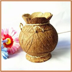 Coconut Shell Painting Ideas