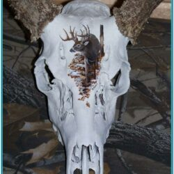 Deer Skull Painting Ideas