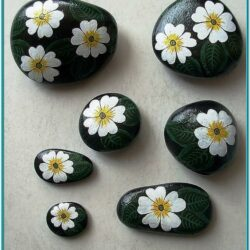 How To Paint Rock Ideas