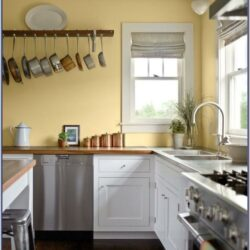 Kitchen Wall Paint Color With White Cabinets
