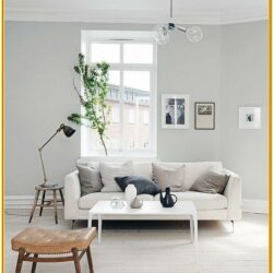 Light Grey Paint Living Room Ideas