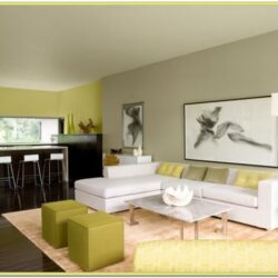 Living Room Painting Colour Ideas
