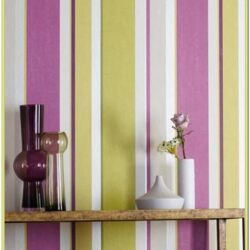 Striped Wall Paint Ideas Pinterest