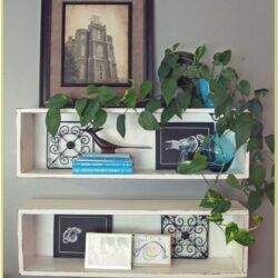 Decorate Shelves Living Room