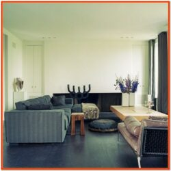 Decorating Ideas For Living Room With Dark Wood Floors