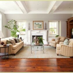Decorating Ideas For Living Room With Hardwood Floors