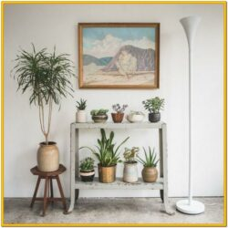 Decorating Small Living Room With Plants