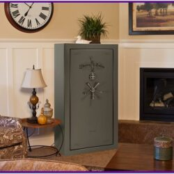 Gun Safe In Living Room Decor