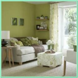 Images Of Living Rooms With Green Walls