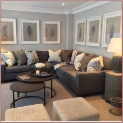 Living Room Decor Brown And Grey
