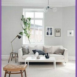 Living Room Decor For Light Grey Walls