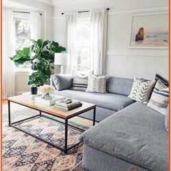 Living Room Decor Grey Carpet