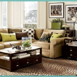 Living Room Decor Ideas Brown