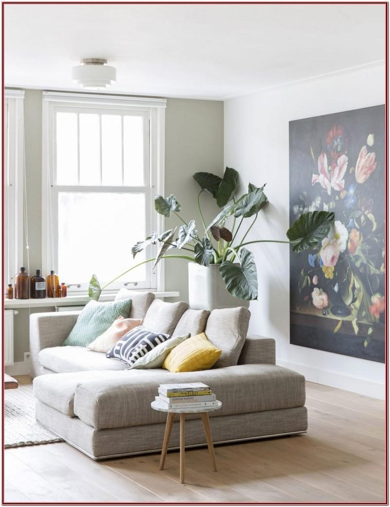 Living Room Decor Ideas With Plants