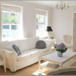 Living Room Decor White Sofa