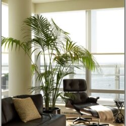 Living Room Decor With Faux Trees