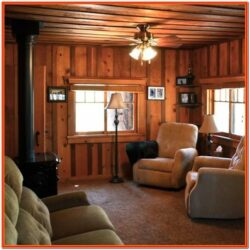 Small Cabin Living Room Ideas