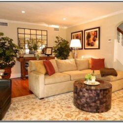 Transitional Living Room Decor Ideas