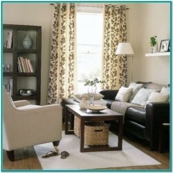 Brown Couch Brown Sofa Decorating Living Room Ideas