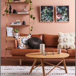 Brown Living Room Ideas 2018