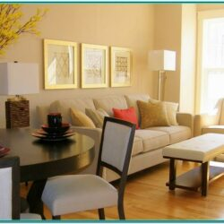 Condo Decorating Ideas Living Room