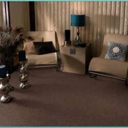 Living Room Decorating Ideas Brown Carpet