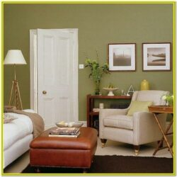 Living Room Decoration Brown And Greem