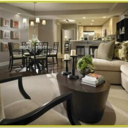 Living Room Dining Room Combo Layout Ideas
