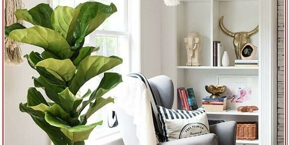 Living Room Indoor Living Room Home Decoration Items