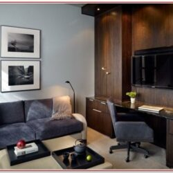 Living Room Office Combo Decorating Ideas