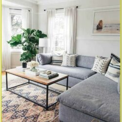 Living Room Rug Ideas Pinterest
