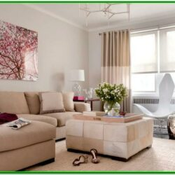Living Room Simple House Decoration