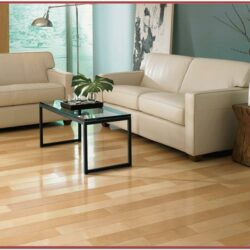 Maple Floor In Living Room Decor