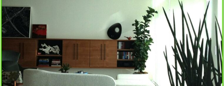 Artificial Plants In Living Room Ideas