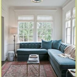 Blue Rug Living Room Design Ideas