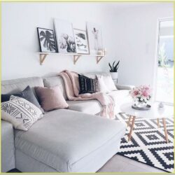 Blush Sofa Living Room Ideas