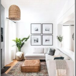 Bright Simple Plant Living Room Ideas