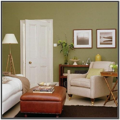 Brown Green Living Room Ideas