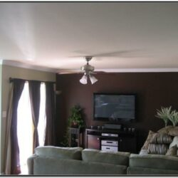 Brown Living Room Ideas Accent Wall