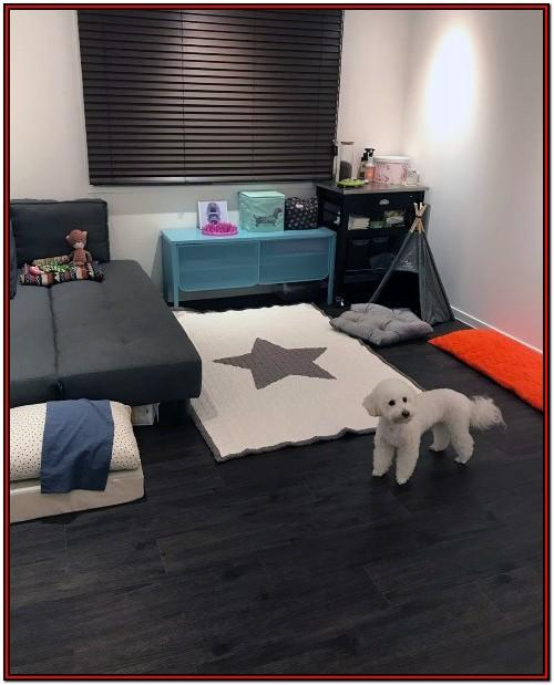 Dog Bed Ideas For Living Room