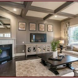 Earth Tones Living Room Design Ideas
