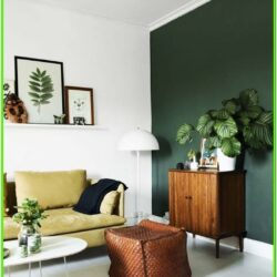Forest Green Living Room Ideas