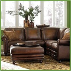 Condo Leather Sectional Living Room Ideas