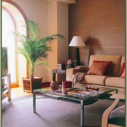 Home Building Living Room Ideas