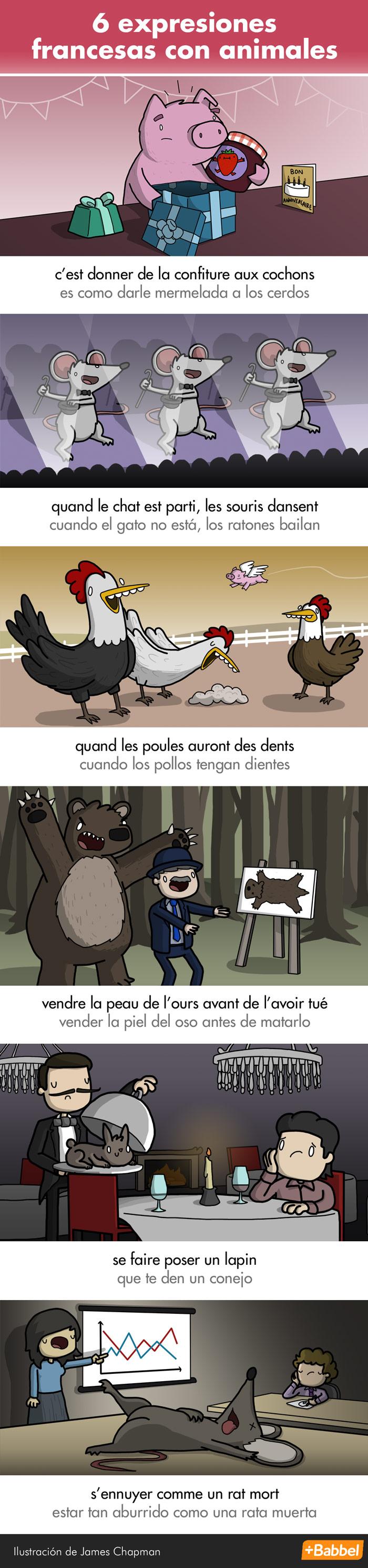 Extrañas y maravillosas expresiones francesas con animales