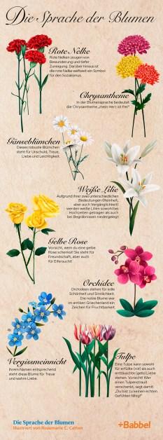 Infografik: Die Sprache der Blumen