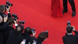 Timothée Chalamet e mais outras 10 celebridades poliglotas