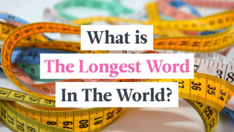 What Is The Longest Word In The World?