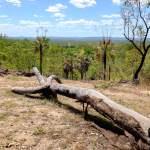 Point de vue - Kakadu