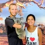 Ouh le petit koala trop mignon